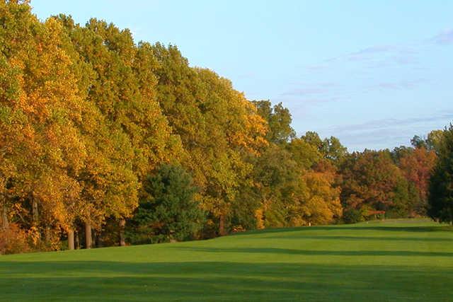 Golden Pheasant Golf Course Netting