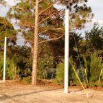 Community Park Baseball Netting