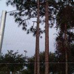 Custom Baseball Netting Install