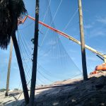 Turn-key Netting Installations