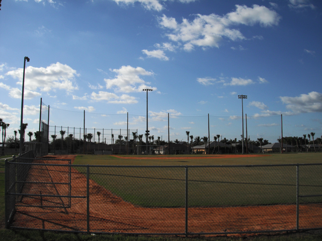 Retractable Netting for Baseball