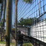 Durable Baseball Netting