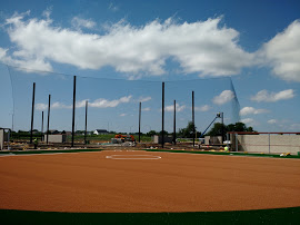 Custom Sport Complex Netting Design