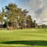 Golf Course Perimeter Nets