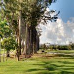 Golf Barrier Netting Install, Miami Beach