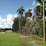 Golf Perimeter Netting Miami Beach