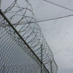 Prison Jail Drug Prevention Nets
