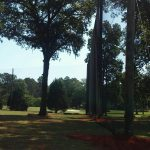 50' Wood Poles supporting Driving Range Netting